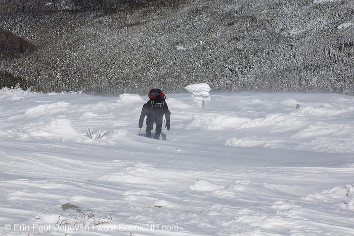 A winter hiker ascending the Air Line Trail, near a trail sign, in the White Mountains, New Hampshire during the winter months.