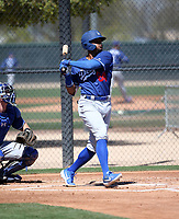 Daniel Robinson - Los Angeles Dodgers 2019 spring training (Bill Mitchell)