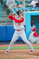 Jeff Diehl (24) of the Brooklyn Cyclones at bat against the Hudson Valley Renegades at Dutchess Stadium on June 18, 2014 in Wappingers Falls, New York.  The Cyclones defeated the Renegades 4-3 in 10 innings.  (Brian Westerholt/Four Seam Images)
