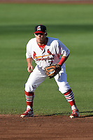 Springfield Cardinals second baseman Jacob Wilson (7) during a game against the Frisco Rough Riders on June 1, 2014 at Hammons Field in Springfield, Missouri.  Springfield defeated Frisco 3-2.  (Mike Janes/Four Seam Images)