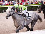 HALLANDALE BEACH, FL - JANUARY 01:   <br /> Squadron A trained by Dale Romans with Corey Lanerie riding wins the Mr Prospector Stakes (G3) at Gulfstream Park. (Photo by Arron Haggart/Eclipse Sportswire/Getty Images