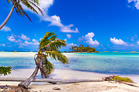 Idyllic turquoise lagoon with coconut trees on the white sand beach, and a small motu in Rangiroa atoll, Tuamotu French Polynesia, South Pacific Ocean