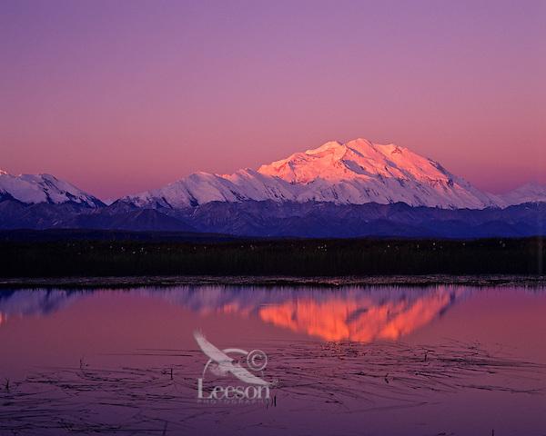 Mount McKinley from small tundra pond, Denali National Park, Alaska.
