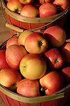Gala apples, Zacherl's Farm Market, Route 23