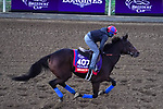 November 4, 2020: Mean Mary, trained by trainer H. Graham Motion, exercises in preparation for the Breeders' Cup Filly & Mare Turf at Keeneland Racetrack in Lexington, Kentucky on November 4, 2020. John Voorhees/Eclipse Sportswire/Breeders Cup/CSM