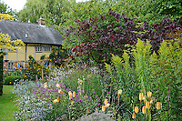 Chris Marchant/Orchard Dene Nurseryman's Choice - July (22nd July 2011)