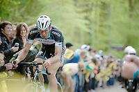 Stijn Vandenbergh (BEL/OPQS) up the Taaienberg<br /> <br /> Ronde van Vlaanderen 2014