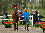LEXINGTON, KY - APRIL 27: #36 Donner and rider Lynn Symansky jog before the vets and grand jury during the first horse inspection for the Rolex Three Day Event on Wednesday April 27, 2016 in Lexington, Kentucky. (Photo by Candice Chavez/Eclipse Sportswire/Getty Images)