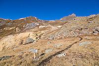 Wetterhorn Peak Trail