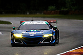 IMSA WeatherTech SportsCar Championship<br /> Continental Tire Road Race Showcase<br /> Road America, Elkhart Lake, WI USA<br /> Friday 4 August 2017<br /> 93, Acura, Acura NSX, GTD, Andy Lally, Katherine Legge<br /> World Copyright: Michael L. Levitt<br /> LAT Images