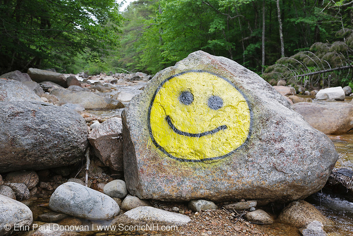 Smiley face painted on rock along the Hancock Branch in Lincoln, New Hampshire. While this photo is from 2010, it's still an excellent example of how humans impact nature.