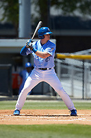 Michael Emodi (29) of the Burlington Royals at bat against the Greeneville Reds at Burlington Athletic Stadium on July 8, 2018 in Burlington, North Carolina. The Royals defeated the Reds 4-2.  (Brian Westerholt/Four Seam Images)
