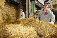 Getting ready for Iditarod 2016, volunteers remove straw from a shipping van as  others bag, zip-tie, stack and shrinkwrap pallets of straw and hay on Thursday, February 11, 2016  at Airland Transport in Anchorage. Nearly 1700 bales will be sent out to over 20 checkpoints along the trail. Iditarod 2016