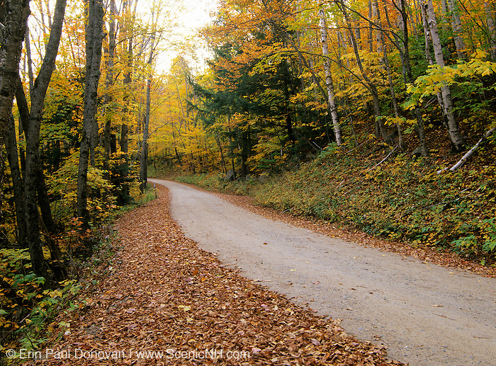 Sawyer River Road in Harts Location, New Hampshire during the autumn months. Parts of this road follow the old Sawyer River Logging Railroad Bed.
