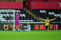 Freddie Woodman of Swansea City looks bemused during the Sky Bet Championship match between Swansea City and Millwall at the Liberty Stadium in Swansea, Wales, UK. Saturday 23rd November 2019