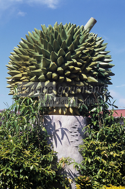 Asie/Malaisie/Bornéo/Sarawak/Kuching: Rond point décoré en forme de Durian