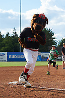 Young Batavia Muckdogs fans run the bases with mascot Homer after a game against the West Virginia Black Bears on June 25, 2017 at Dwyer Stadium in Batavia, New York.  Batavia defeated West Virginia 4-1 in nine innings of a scheduled seven inning game.  (Mike Janes/Four Seam Images)
