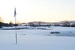 Frozen Golf