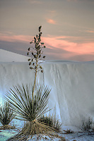 Vintage White Sands - New Mexico - White Sands National Monument