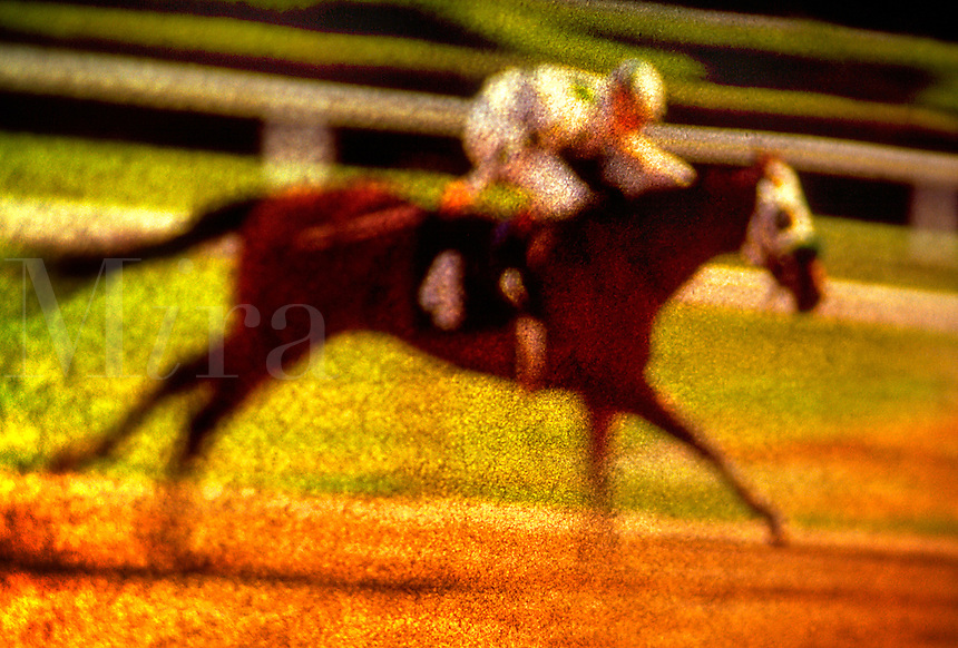 Horse race. United States.
