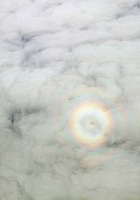 aerial photograph of a glory ring around the shadow of a small single engine aircraft