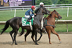 17 July 2010: Gozzip Girl, Elvis Trujillo up, in post parade before the Robert Dick Memorial Stakes at Delaware Park in Stanton, DE. They finished 4th.