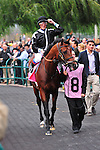 Joshua Tree (IRE)(8) with Jockey Lanfranco Dettori aboard achieved victory at Grade 1 Pattison Canadian International  in Toronto, Canada on October 14, 2012.