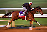 November 1, 2020: Frank'S Rockette, trained by trainer William I. Mott, exercises in preparation for the Breeders' Cup Sprint at Keeneland Racetrack in Lexington, Kentucky on November 1, 2020. Alex Evers/Eclipse Sportswire/Breeders Cup /CSM