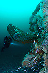 A rebreather diver checks out the colourful propellor
