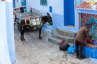 Chefchaouen, Morocco.  Man Filling a Water Bottle at a Public water Tap.