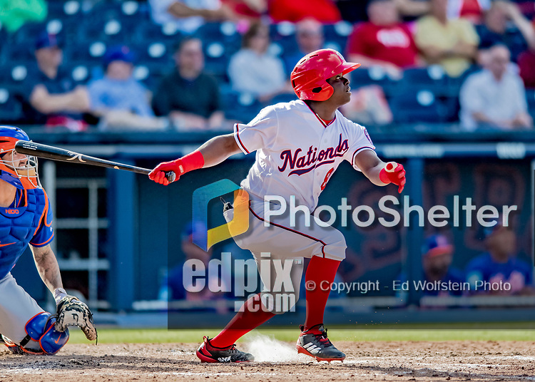 7 March 2019: Washington Nationals outfielder Telmito Agustin at bat during a Spring Training Game against the New York Mets at the Ballpark of the Palm Beaches in West Palm Beach, Florida. The Nationals defeated the visiting Mets 6-4 in Grapefruit League, pre-season play. Mandatory Credit: Ed Wolfstein Photo *** RAW (NEF) Image File Available ***