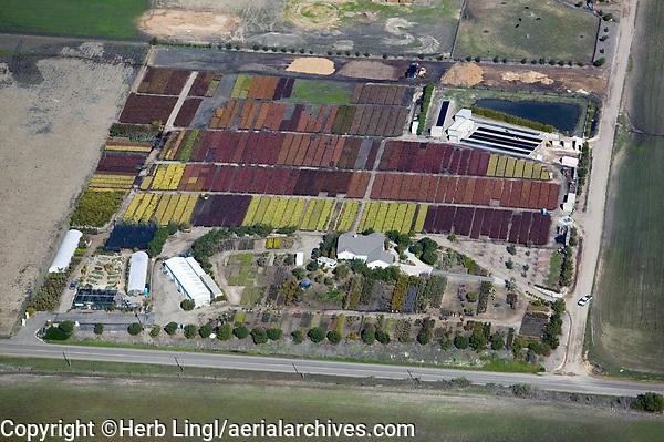 aerial photograph nursery, flower farm, Ventura, California
