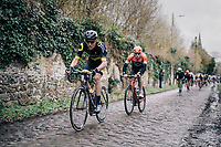 Niki Terpstra (NED/Direct Energie) crushing cobbles<br /> <br /> 51th Le Samyn 2019 <br /> Quaregnon to Dour (BEL): 200km<br /> <br /> ©kramon