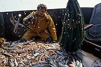 """Europe/France/Bretagne/29/Finistère/Le Guilvinec: Pêche en mer sur le chalutier """"Samouraï"""" - ouverture du chalut [Non destiné à un usage publicitaire - Not intended for an advertising use]"""