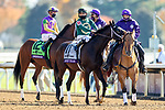 November 7, 2020 : Horses get ready for the Big Ass Fans Dirt Mile on Breeders' Cup Championship Saturday at Keeneland Race Course in Lexington, Kentucky on November 7, 2020. Wendy Wooley/Breeders' Cup/Eclipse Sportswire/CSM