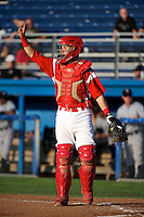 Batavia Muckdogs catcher Adam Lewis #12 during a game against the Staten Island Yankees at Dwyer Stadium on July 30, 2012 in Batavia, New York.  Batavia defeated Staten Island 5-4 in 11 innings.  (Mike Janes/Four Seam Images)
