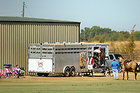 Eric Hammon's private Polo field, Lincoln California, September 24, 2007. (photo by Pico van Houtryve)