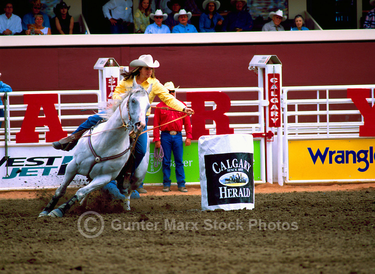 Rodeo Cowgirl riding Horse in Ladies Barrel Racing Event at Calgary Stampede, Calgary, Alberta, Canada - Editorial Use Only