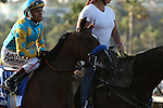 DEL MAR, CA  AUGUST 27:  at Del Mar Turf Club on August 20, 2016 at Del Mar, CA (Photo by Casey Phillips/Eclipse Sportswire/Getty Images)
