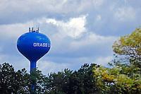 .Grass Lake Water Tower..Image from Saturday's Marathon