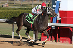 January 22, 2021: Strolling (12) with jockey Ramon Vazquez winning the fifth race at Oaklawn Racing Casino Resort in Hot Springs, Arkansas on January 22, 2021. Justin Manning/Eclipse Sportswire/CSM
