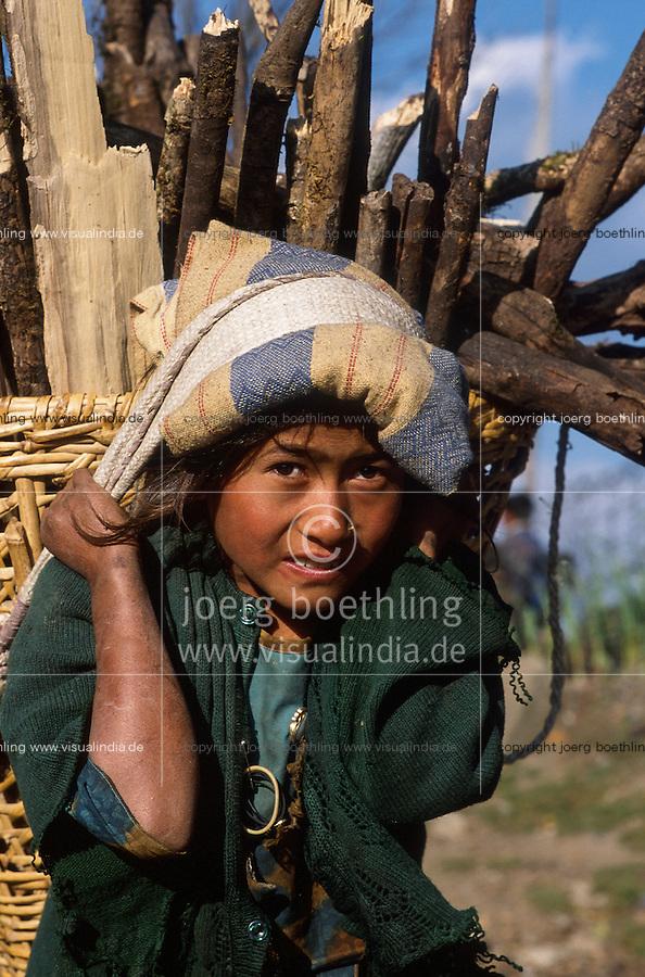 NEPAL girl carry a load of firewoods on the back / Maedchen traegt Feuerholz auf dem Ruecken