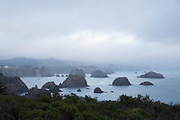 Sea stacks near Irish Beach, northern California