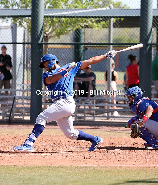 Wladimir Galindo - Chicago Cubs 2019 spring training (Bill Mitchell)