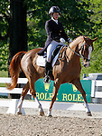LEXINGTON, KY - APRIL 28: #5 Share Option and rider Lillian Heard in the warm up ring before their Dressage test in the Rolex Three Day Event, Dressage Day 1, at the Kentucky Horse Park in Lexington, KY.  April 28, 2016 in Lexington, Kentucky. (Photo by Candice Chavez/Eclipse Sportswire/Getty Images)