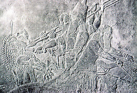 Assyria:  King Ashurbanipal slaying a lion  from his chariot. Ninevah.  Photo '85.