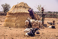 Djerma (Zarma) Woman Entering her Hut with Pot on Head, baby on Back.  Djiliki, Niger.