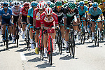 The peloton including Pierre Luc Perichon (FRA) Cofidis during Stage 2 of Criterium du Dauphine 2020, running 135km from Vienne to Col de Porte, France. 13th August 2020.<br /> Picture: ASO/Alex Broadway | Cyclefile<br /> All photos usage must carry mandatory copyright credit (© Cyclefile | ASO/Alex Broadway)