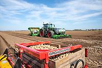 Planting potatoes - Lincolnshre, March
