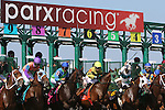 September 07, 2015. Start of race 6. Undercard races and scenes around the track on Labor Day at  Parx Racing in Bensalem, PA.  (Joan Fairman Kanes/ESW/CSM)